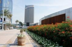 Dubai19